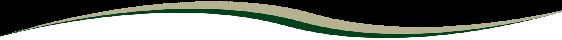 Landscape Wave